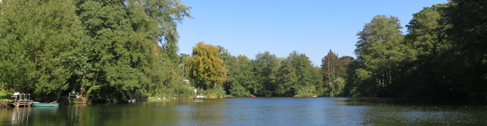 Umweltschutz und Landschaftspflege für den Waldsee in Berlin-Zehlendorf e.V.